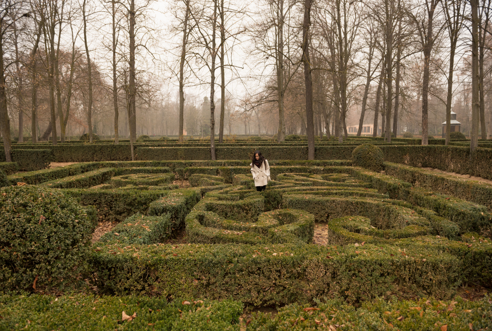 Asian Girl Exploring Hedge Maze