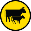 Road_Safety_Icons_14.png