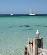 Bunbury-to-Busselton-2.jpg